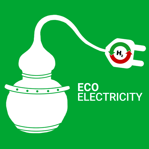 lifeecoelectricity